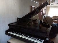 Niendorf Baby Grand piano. 1924 in great condition may need tuning after move but sounds good