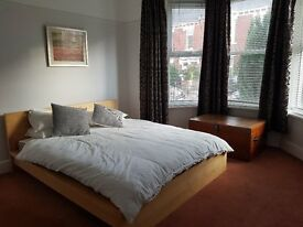 All inclusive large dbl room in professional house