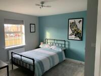 Plasterer , plastering , painters decorators wallpapers experts / handy man