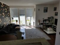 Superb 1 Bed flat w. riverside views, 24h concierge, onsite spa & gym, parking & private management
