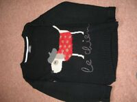BNWT Next Dog Jumper Size 11-12 152cm