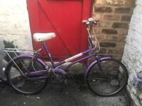 Shopper Bicycle