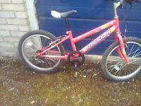Child Raleigh Bicycle