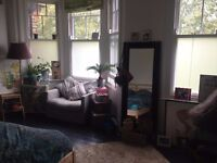 Big double room in Clapton for a girl