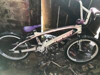 BMX race bike prophecy scud carbon fibre