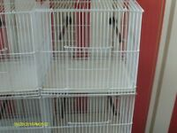 FOR SALE WIRE SINGLE BIRD CAGES