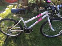 "Dunlop Diamond 24"" wheel girls mountain bike"