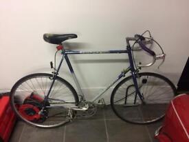 Large Dawes lightweight bike