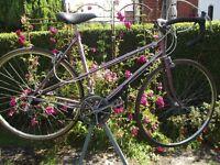 Vintage Ladies Raleigh Silhouette Racing Bike / Tourer Classic Retro Road Racer Race Cycle