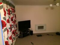 Spacious room in 2 bedroom Flat share