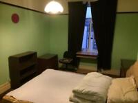 Large double bedroom available for professional £350 pm