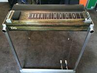 DG pedal steel guitar, greats beginners steel