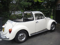 Classic vw beetle convertable