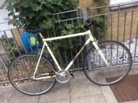 Single speed / fixed gear bike 58cm