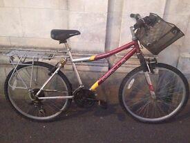 Apollo Contour Mountain Bike