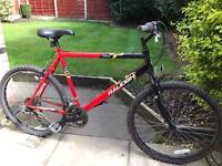 adults raliegh rave mountain bike hardly used