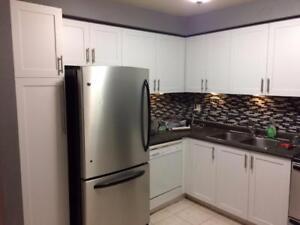 Devix Kitchen Cabinets Refacing