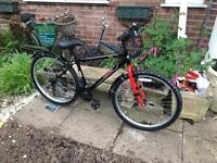 Arden Bike