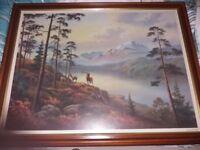 """Highland scene stag print framed 34"""" x 26"""""""