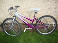 Girls Raleigh bycicle age approx 8-14 years