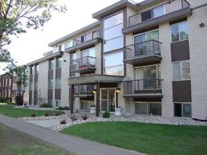 Beautiful 2 Bd w/ Laminate & Balcony in Central Family Bldg~129