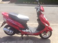 Moped 50cc pulse scout 14plate