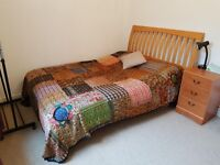 Monday - Friday let, double room in lovely 2-bed flat in Bedminster