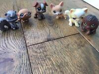 Littlest pet shop rares (2)