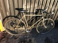 """Carlton Stadium 22.5"""" Frame Racing Bike. Serviced, Great condition. Free Lock, Lights, Delivery"""