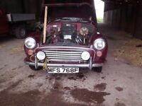 1967 morris minor car has been stored since 2000