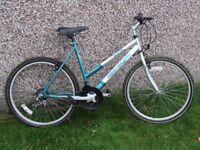 Lady's Mountain Ridge Bike