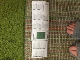 Light green rug