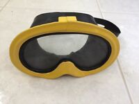 Champion divers mask
