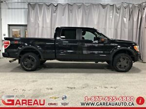 2010 Ford F-150 4WD REGULAR CAB 126'' WB 4X4 - FX4