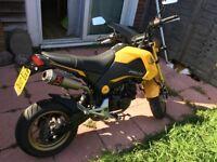 Msx 125 yellow
