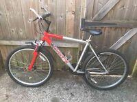 Men bike ( silver fox )
