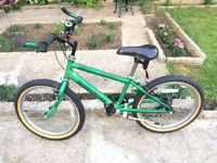 "KIDS GIRLS BOYS CHILDREN RALEIGH MX 13"" FRAME 20"" WHEEL GREEN BIKE BICYCLE"
