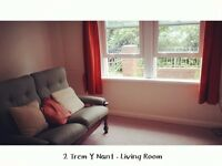 Fully Furnished and decorated 3 Bedroom House for rent close to Bangor train station/university