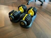 Adjustable Dumbbells 25kg - Everlast