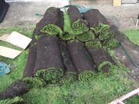 16 rolls garden turf+offcuts