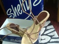 Shelley's Wedges
