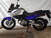 Suzuki xf 650 for sale