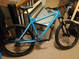 Custom Mountain Bike (Large), Full spec listed, in excellent condition