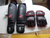 Hayabusa MMA gloves and shin guards medium