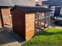 Cattery avairy shed cat pen