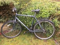 "Serviced Professional Regent bike 23"" frame"