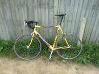 Specialized Allez Road Bike for Sale