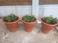 Small size garden patio tubs