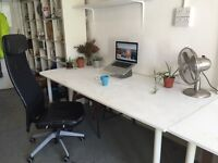 Calling all arty/creative types to our studio in Daltson - We have a desk space available now