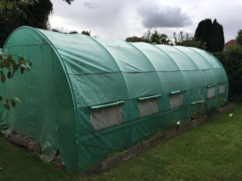 Walk in Polytunnel. 6m x 3m polythene polytunnel with a galvanised steel frame. for sale  Scunthorpe, Lincolnshire